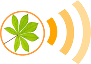 Cassava Seed Tracker
